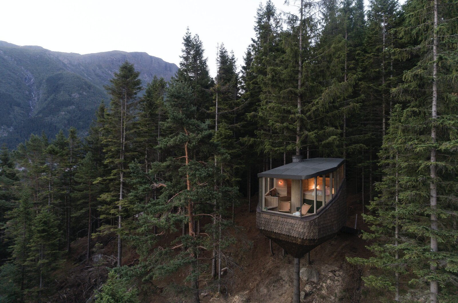 Woodnest tree house exterior