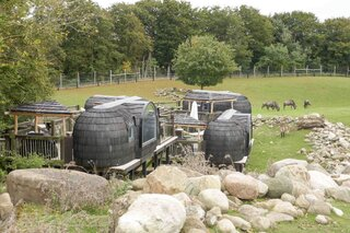 These custom-designed Igluhuts by Iglucraft provide overnight accommodation for guests of Ree Park Safari in Ebeltoft, Denmark, about 150 miles northwest of Copenhagen.