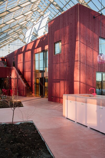 """The home is clad in red-painted Norwegian pine, echoing the red-flecked trunks of the surrounding spruce forest. """"We wanted to reference a traditional red barn in a modern way and pull it forward into our time and give it a complexity,"""" says color consultant Dagny Thurmann-Moe."""