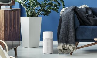 12 Air Purifiers That Will Help You Breathe Easy During Sneeze Season