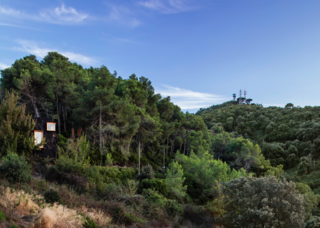 The Voxel sits in Spain's Collserola natural park near the Valldaura Labs research campus, where IAAC students focus on designing and building self-sufficient structures.