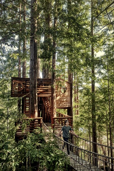 Woven into a stand of redwoods on Jason Titus and Nerija Sinkevičiūtė-Titus's property in the Santa Cruz Mountains, a tree house by San Francisco designer/artist Jay Nelson gives the couple and their three boys a new perspective on the forest.
