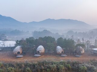 These Eclectic Pods Nestled in a Chinese Pine Forest Imitate Their Natural Surroundings