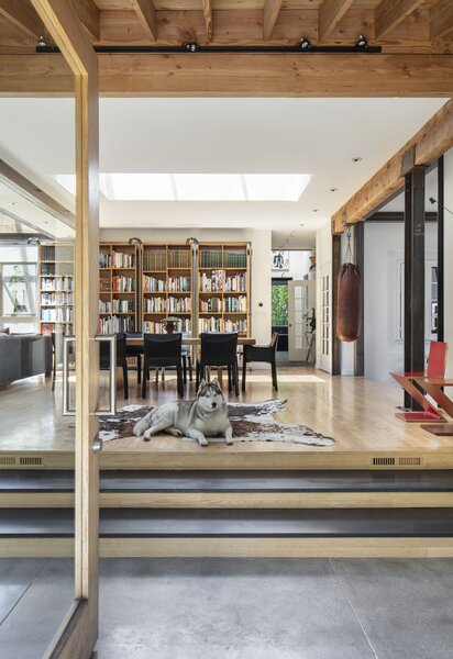 Sarah Butler and Mel Elias's Siberian husky, Rooney, reclines in the renovated dining room of their Los Angeles home. The raised floor provides easy access to mechanical systems, something the house lacked as originally built.