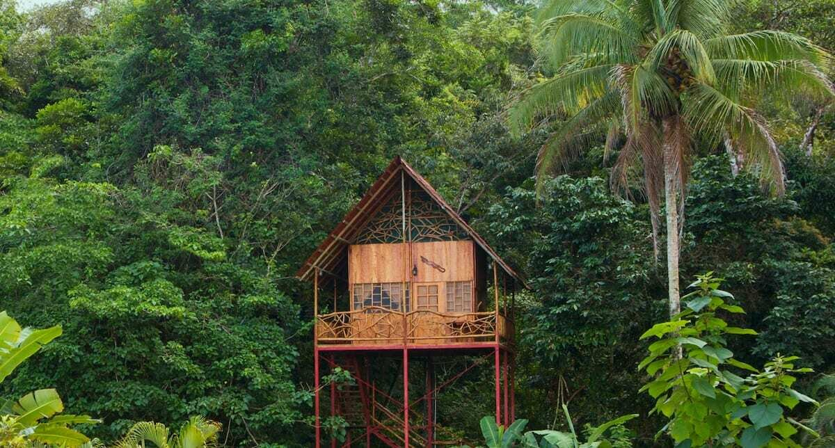 This enchanting tree house is perched above natural hot and cold springs right on the premises. There are also a number of surrounding hiking trails just steps away.  Photo 4 of 9 in 9 Breathtaking Tree Houses You Can Rent on Airbnb This Summer