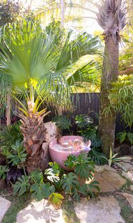 In one of several distinct outdoor spaces, a pink terrazzo tub creates an oasis under the palms.