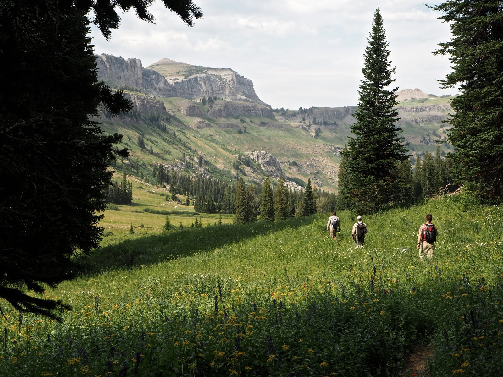 Hike back to camp. Death Canyon is full of wildlife and wild flowers. The journey is the destination. Grand Teton National Park.  Photo 1 of 1 in 31 Gifts for the Crunchy-Granola Types Who Are Always Up for an Adventure from Grand Teton Expedition
