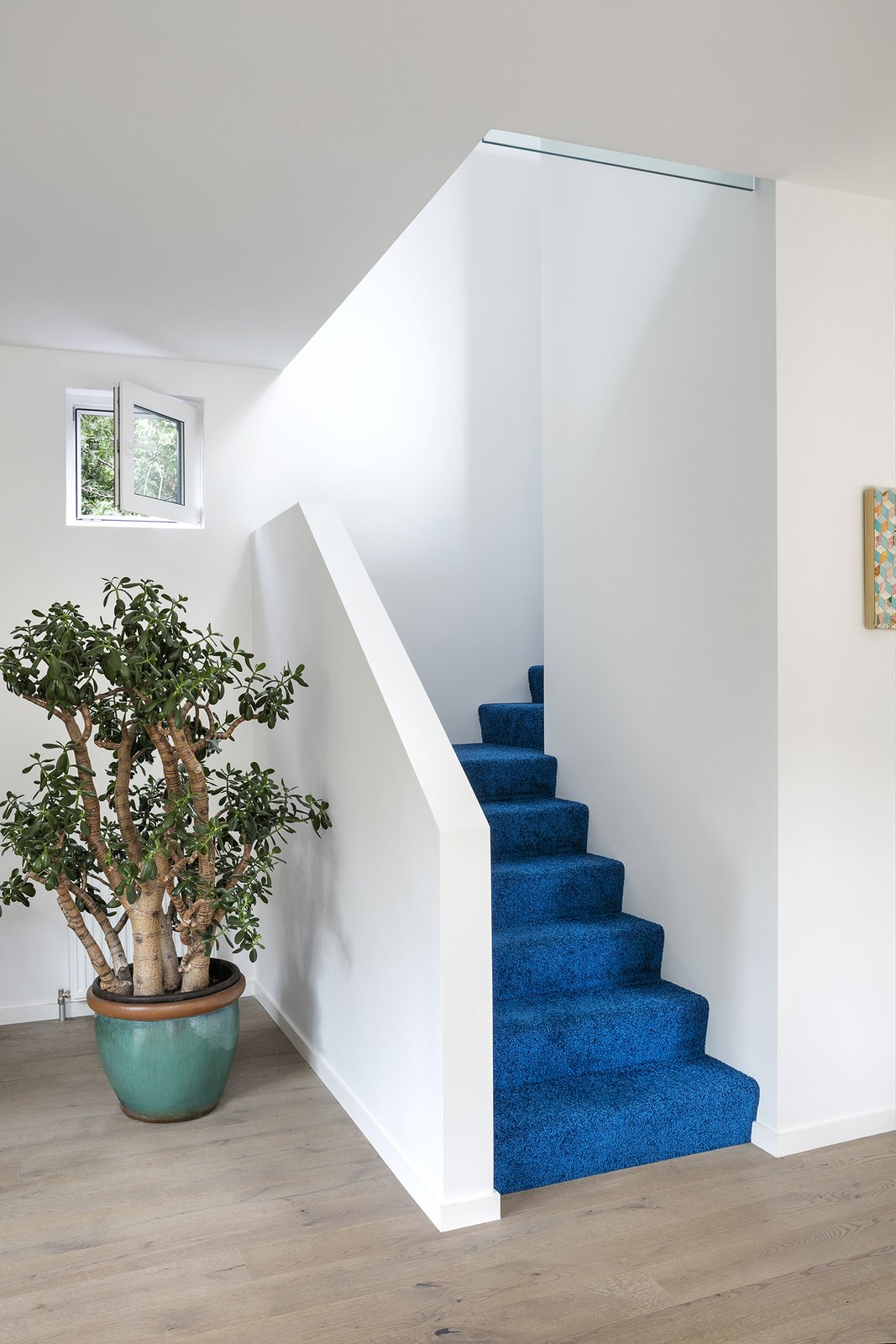 Staircase Cobalt blue carpet by Object Carpet leads to the second floor.  Photo 5 of 8 in Quirky Toronto House Is Far From Color Shy