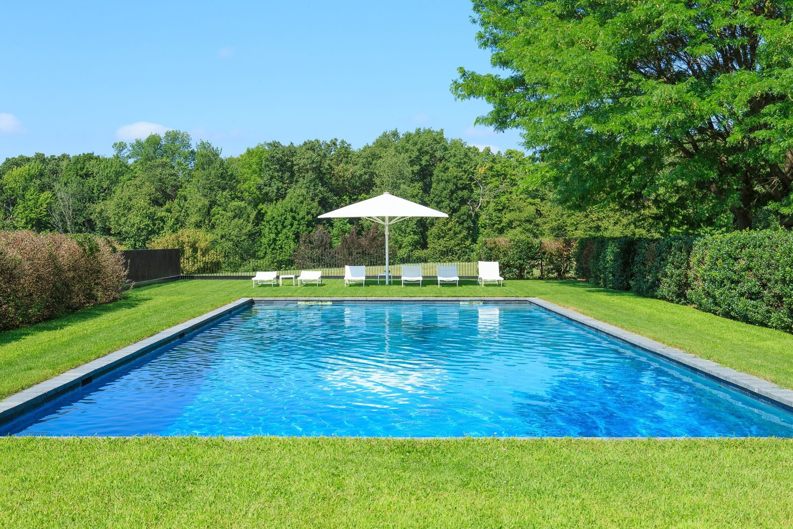 By following a pathway of Linden trees from the indoor pool, you'll find yourself at the outdoor pool.  Photo 13 of 15 in A Thomas Phifer-Designed Glass-and-Steel Masterpiece For Sale