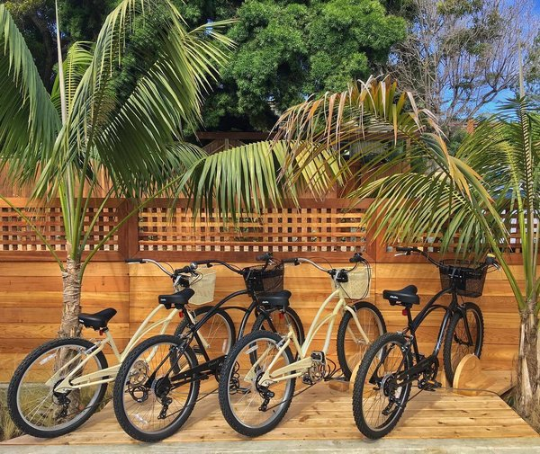 Outdoor, Wood Patio, Porch, Deck, Decking Patio, Porch, Deck, Wood Fences, Wall, and Horizontal Fences, Wall While staying at Surfhouse, you can borrow a seven-speed beach cruiser by Electra Bicycle Company. The area is extremely bike-friendly, so it's the perfect opportunity to roam around and explore the local restaurants, wine bars, shops, and beaches.  Photo 8 of 11 in A New Modern Hotel in San Diego Offers Surfing Adventures and Local Hospitality