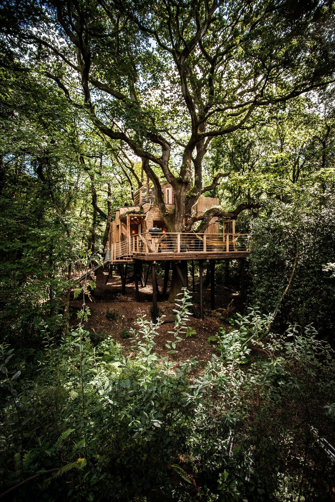Part of an eco-friendly glamping retreat in Dorset, UK, Woodman's Treehouse is built using local materials where possible and includes traditional wooden craftsmanship throughout the interior. The structure stands on high stilts to minimize its effect on the land, and all the existing trees are protected and maintained unharmed and untouched.  Photo 6 of 6 in The Woodman's Treehouse