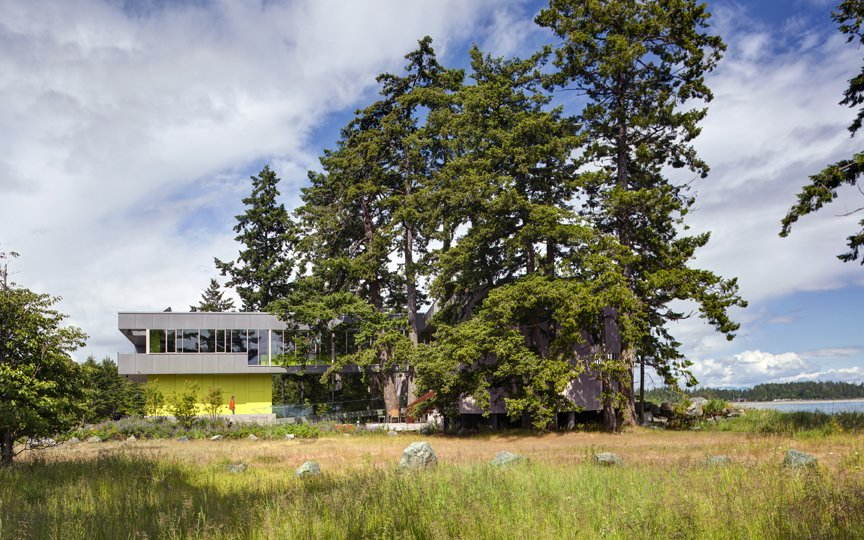Preserving these majestic trees and pristine coast became a departure point for the siting strategy and formal language of the house and landscape. The main house is clad in the local Douglas fir with deep protective eaves. In contrast, the elevated guest house in mineral in nature poetically connected to the land.   #beachhouse #nature #trees #douglasfir #siting #preservation #landscape #residentialarchitecture #residential #interstice #intersticearchitects #comox #britishcolumbia #vancouverislands #bradlaughton #bradlaughtonphotography   TreeHugger