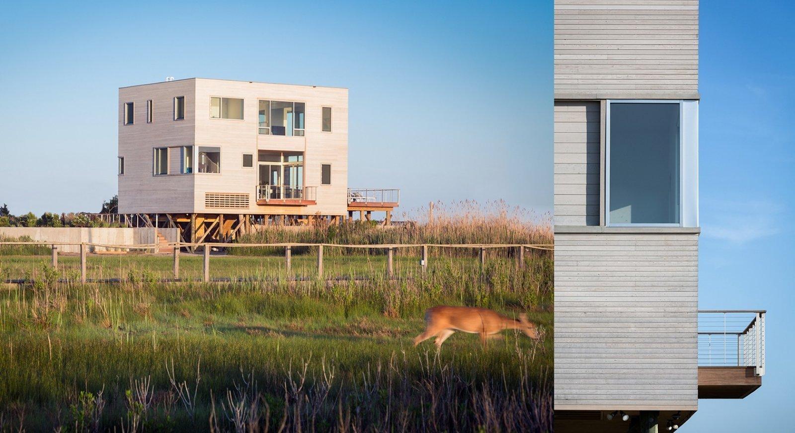 #CubeHouse #modern #cube #exterior #outside #landscape #windows #deck #timber #wetlands #cedar #retreat #privacy #dynamic #naturallighting #Westhamptonbeach #NewYork #LeroyStreetStudio   Cube House