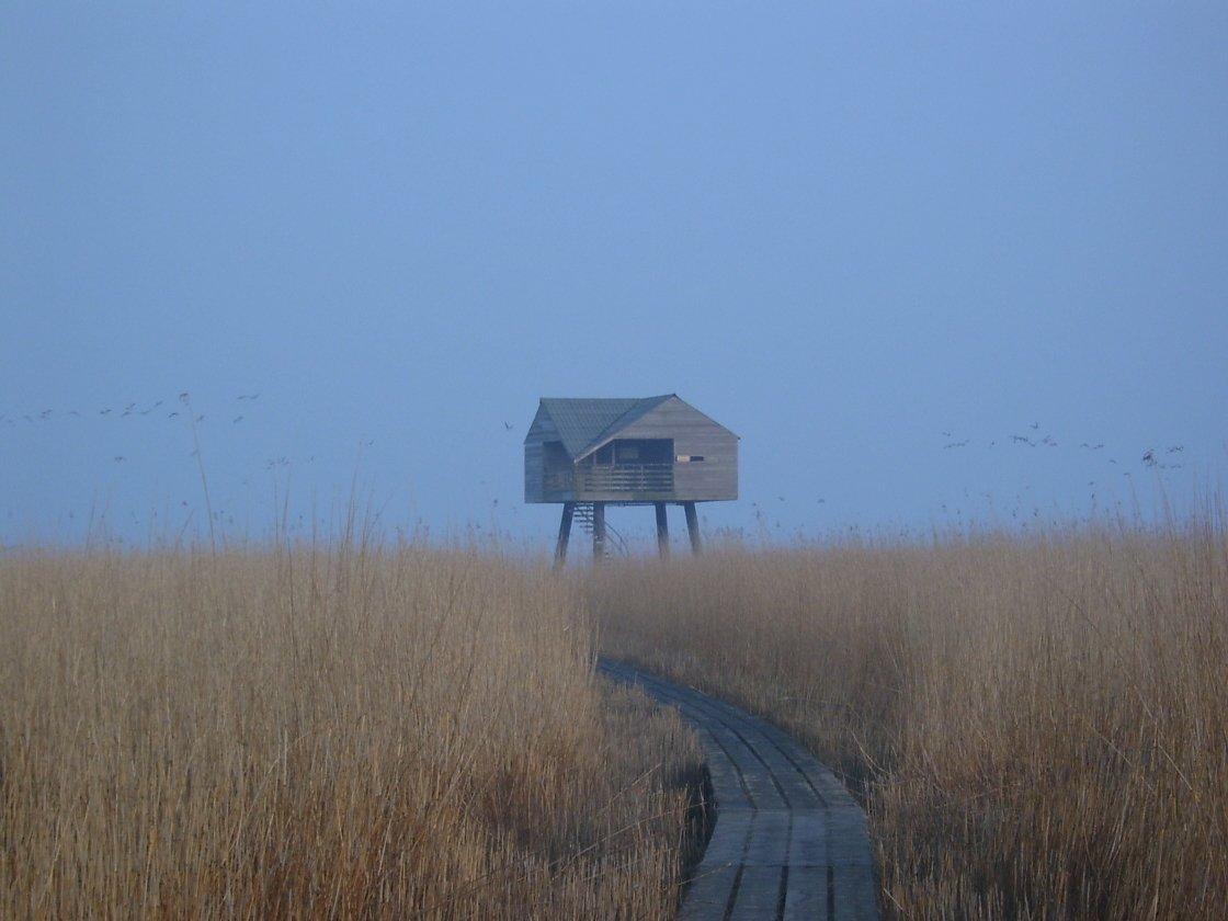 De Kiekkaaste bird lookout in Provincie Groningen, Netherlands.  Cabin