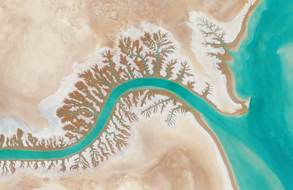 Resembling branches of a tree, these dentritic drainage systems are seen around Iran's Shadegan Lagoon.  Reprinted with permission from Overview by Benjamin Grant, copyright (c) 2016. Published by Amphoto Books, a division of Penguin Random House, Inc.   Images (c) 2016 by DigitalGlobe, Inc.   Ever Wondered About the View from Space?