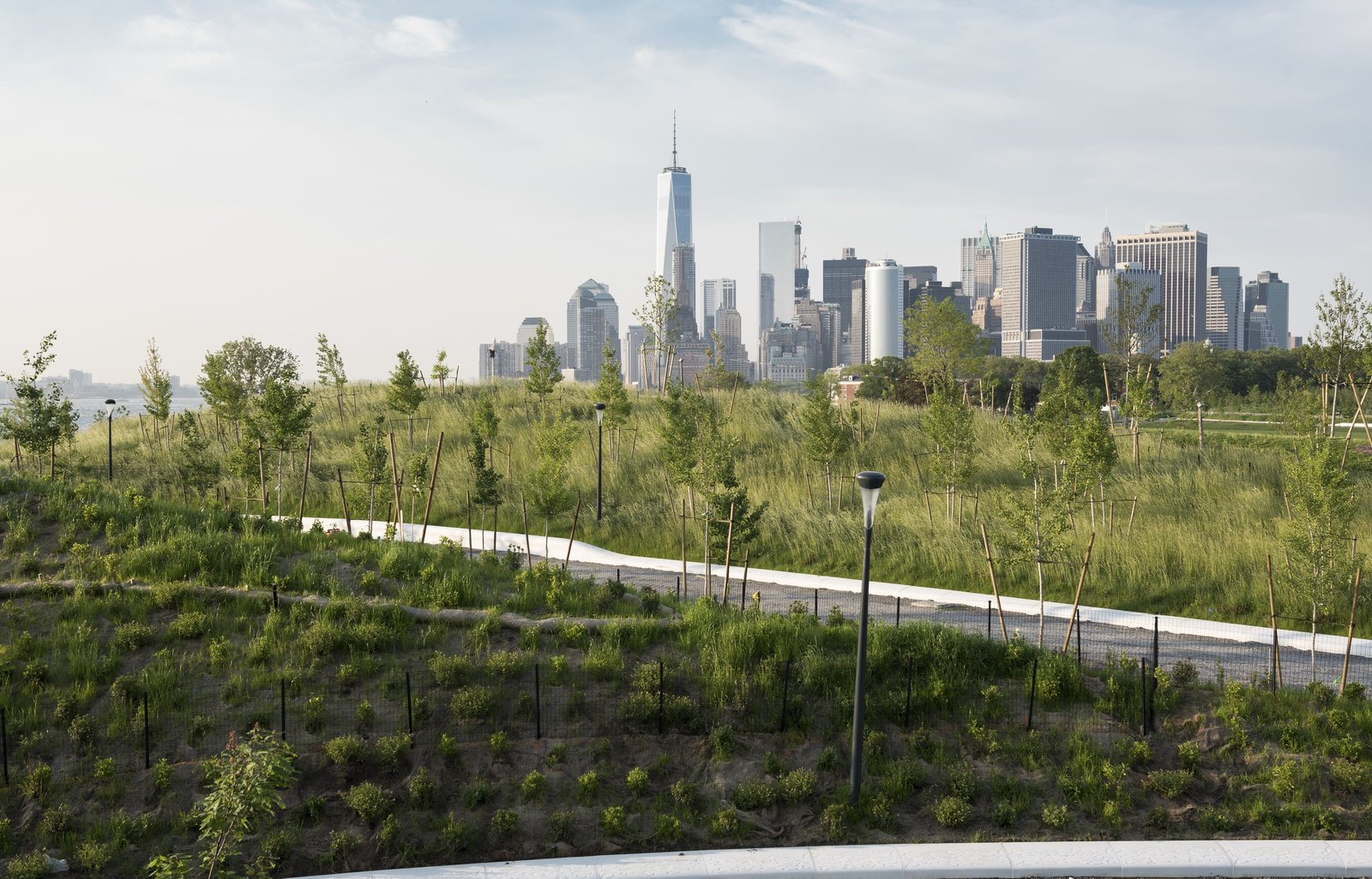 The planting plan was designed to provide viewing corridors toward the city, with visitors enjoying 360-degree vistas from the top of the tallest hill. Some 830 trees from 32 species selected for their size, color, and heartiness—including a variety of oaks and sassafras—were planted on The Hills, with a mix of balled-and-burlapped and container techniques.  Photo 3 of 6 in New York's Newest Park Sits on Recycled Demolition Debris