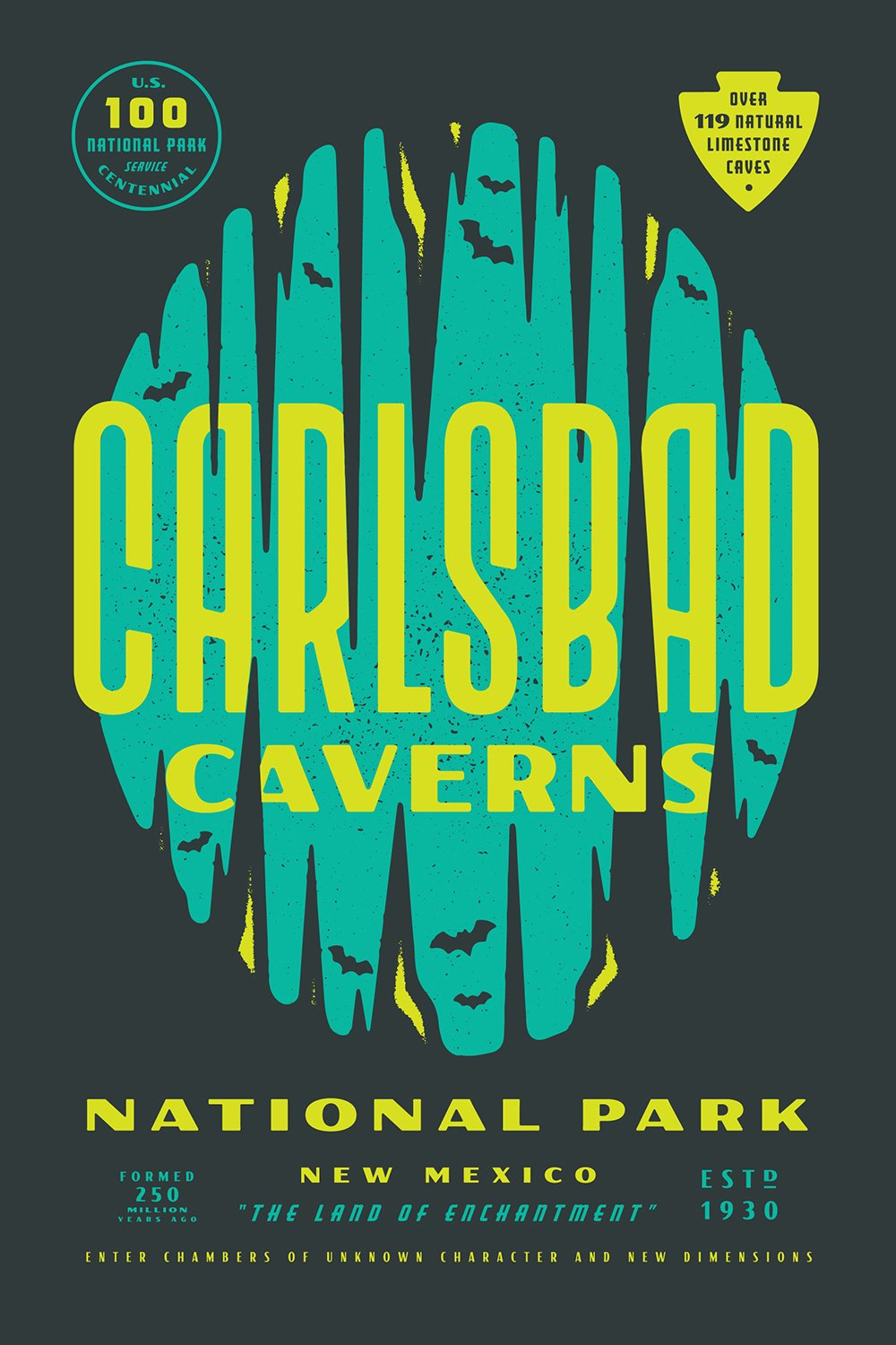 Carlsbad Caverns National Park designed by Lauren Dickens  With Type Hike, 59 Graphic Designers Celebrate the National Park Service Centennial