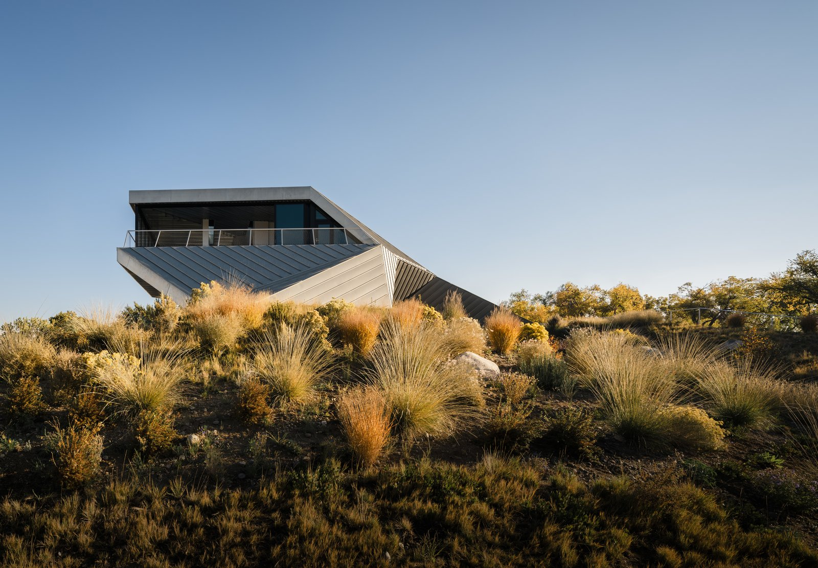 Outdoor, Shrubs, Side Yard, and Desert Michael Doherty Construction completed the 5,900-square-foot house in 2017.  Photo 9 of 19 in Two Art World Veterans Live in This Mind-Bending Metal Home in Nevada