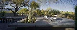 #modern #moltzresidence #ibarrarosanodesignarchitects #architecture #landscape #exterior #arizona #backyard #outdoor #seatingdesign #loungechair #dining