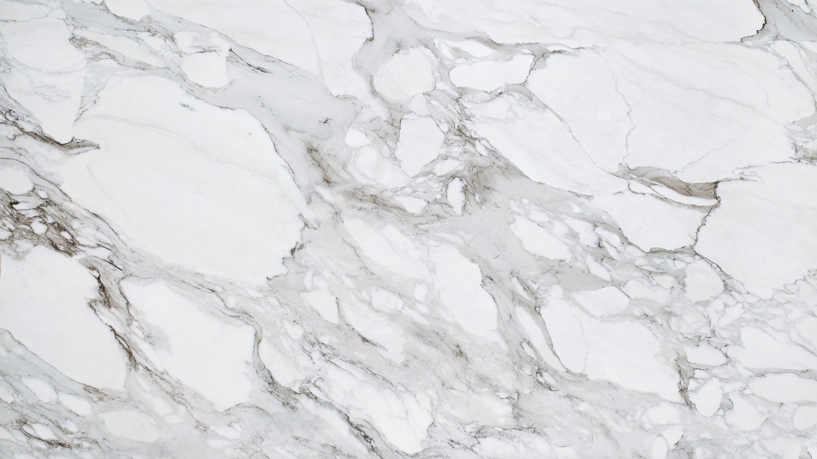 Sample of Knoll Grade AA calacatta marble, 2013. Photograph by Knoll.  Photo 3 of 14 in Quarry to Table: A Story in Stone