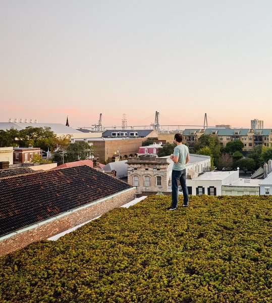 A modern home in Charleston has a roof filled with drought-resistant succulents.