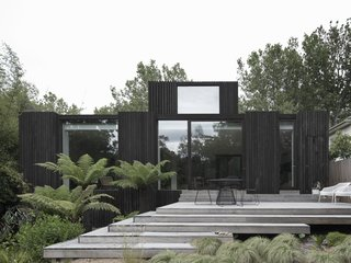 There's a Jungle Inside This Blackened Timber Home in Melbourne