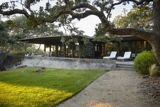 The home was originally built by California architect Walter Thomas Brooks in 1962. The owners, Janet and Mark Hall, fell in love with its midcentury design and connection to the property's surrounding blue oak trees.