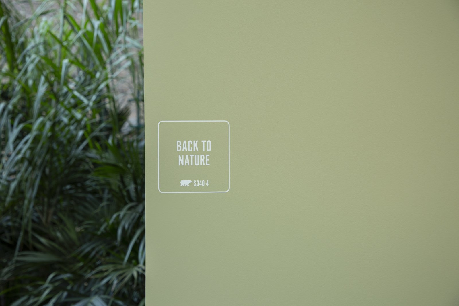 behr 2020 color of the year