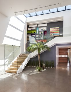"""The oversized skylight enables the owners to see the sky from the center of the house,"" Maydan says. ""It was also important to ensure that the palm tree, which was planted in the center of the entry atrium, can get plenty of sunlight."""