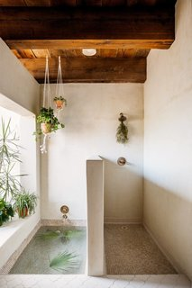 Bath Room and Open Shower Hang plants with creeping vines from your bathroom's ceiling for a calming visual effect.