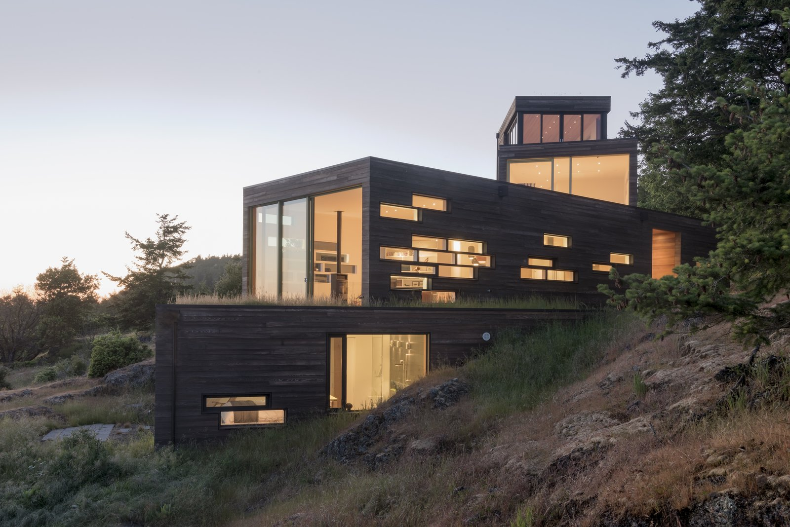Exterior, House Building Type, Green Roof Material, and Wood Siding Material From below, the volumes seem to cascade down the hillside. Windows light up in a dramatic pattern at night, a sharp contrast to their subtle shapes during the day.  Bailer Hill by Prentiss + Balance + Wickline Architects