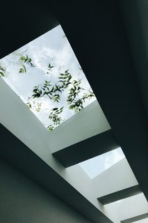 A series of skylights filters light from above and strengthens the relationship to the site and nature.