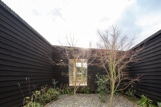 """The home wraps around an existing orchard, brought to life with the help of landscape designer Sol Correa, who used native plants and vegetables. It was important that """"the house and the kitchen coexist with its own garden, and with species from the area,"""" says Sánchez."""