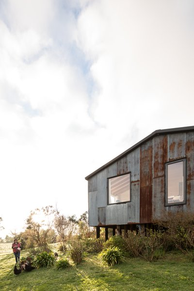 The home is built with minimal disturbance to the landscape, perched on piles which mitigate the slope of the site.