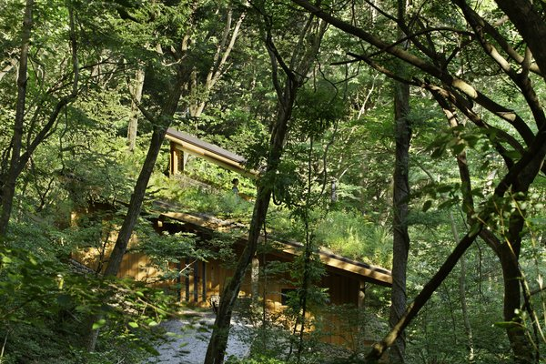 Hiroshi Nakamura & NAP created a sunken retreat in Karuizawa, Japan. Its glass lookout allows the residents to study wildflowers blanketing the forest floor.