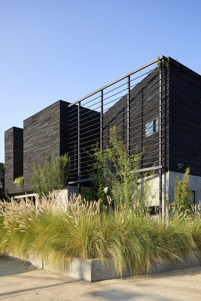 TerraMai's Faux Sugi Ban reclaimed redwood siding gives the Jungle Gym House its striking ebony appearance.