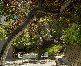 Potrero Residence Garden