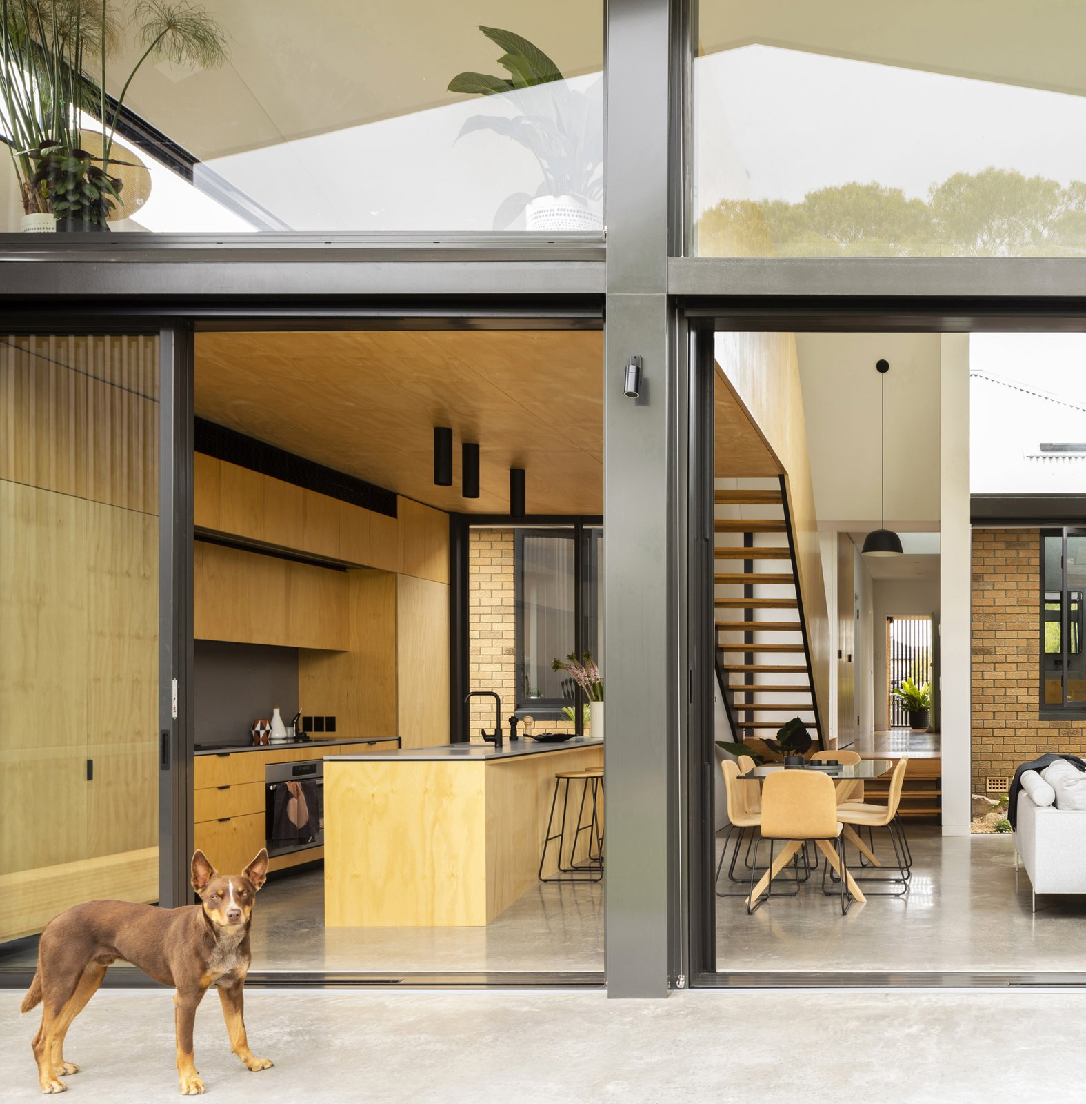 Windows, Metal, Picture, and Sliding A binary play of considered honey and gray tones strongly reference the exterior yellow brick and gray metal of the two distinct structures.  Best Windows Sliding Metal Photos from Binary House