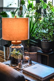 Carter designed a terrarium-turned-table lamp for the living room.