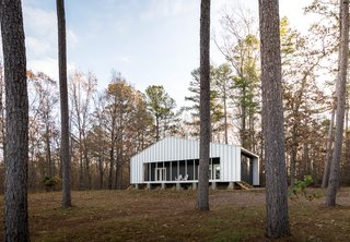 The vertical metal panels of the exterior siding reference the tall tree trunks that surround the house.