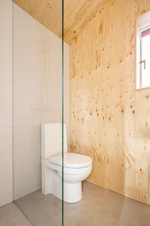 A glass wall separates the toilet area and offsets an unfinished pine plywood wall in the bathroom.