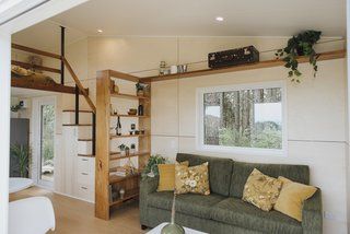 A sizable window in the living room frames a view of of the adjacent pine tree forest. A recycled Rimu timber shelf above the window provides additional storage.