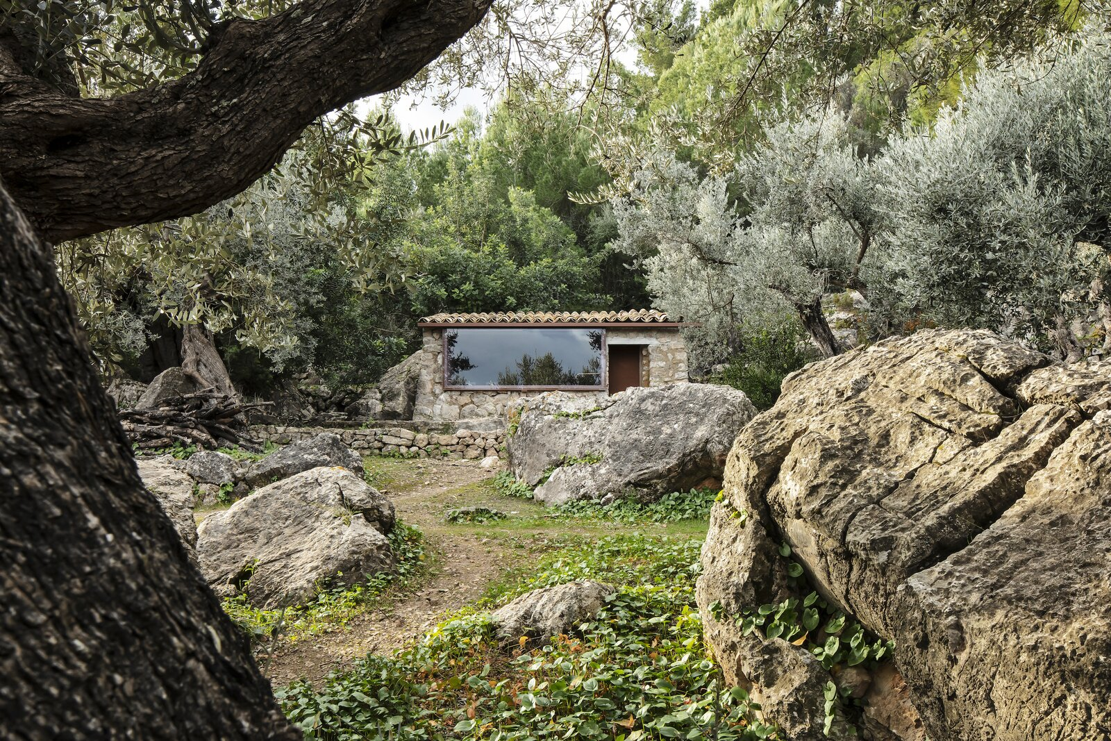 The Olive Houses exterior