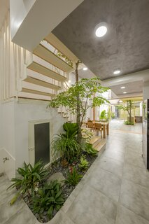 A skylight at the top of the staircase, which winds around a carambola tree, floods the interior with sunlight.