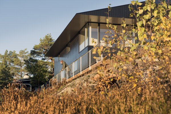 Tall pine trees and thick brush near the cabin are a counterpoint to the structure's glossy black exterior.