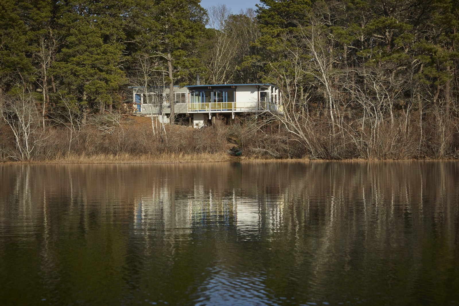 House Building Type, Outdoor, Woodland, Trees, and Shrubs Anchored on concrete piers at the higher end of the slope, the house shoots out over stilts, suspended in midair for a commanding view.  Photo 2 of 9 in Experience Cape Cod Modern by Staying at the Midcentury Weidlinger House