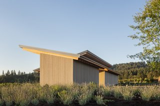 The design takes cues from the vernacular architecture of the Willamette Valley.