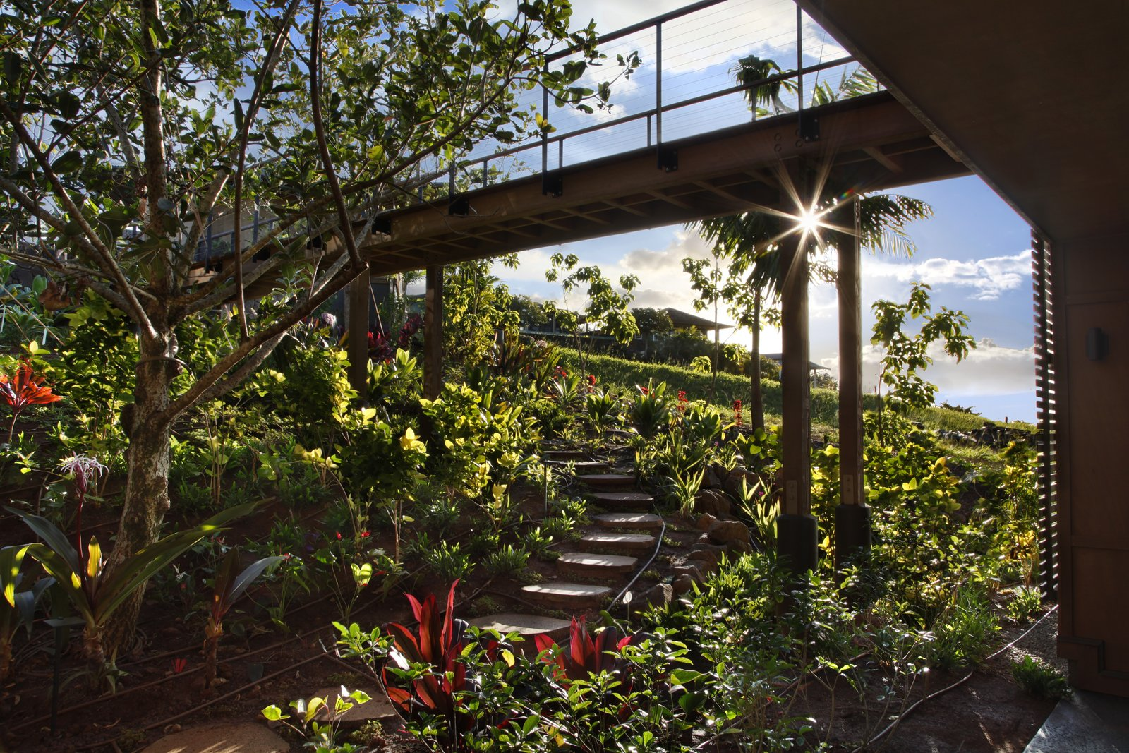 Outdoor, Walkways, Trees, Flowers, and Gardens A dreamy garden path.  Photo 13 of 14 in A Breezy Hawaiian Residence by Olson Kundig Hits the Market at $6.95M