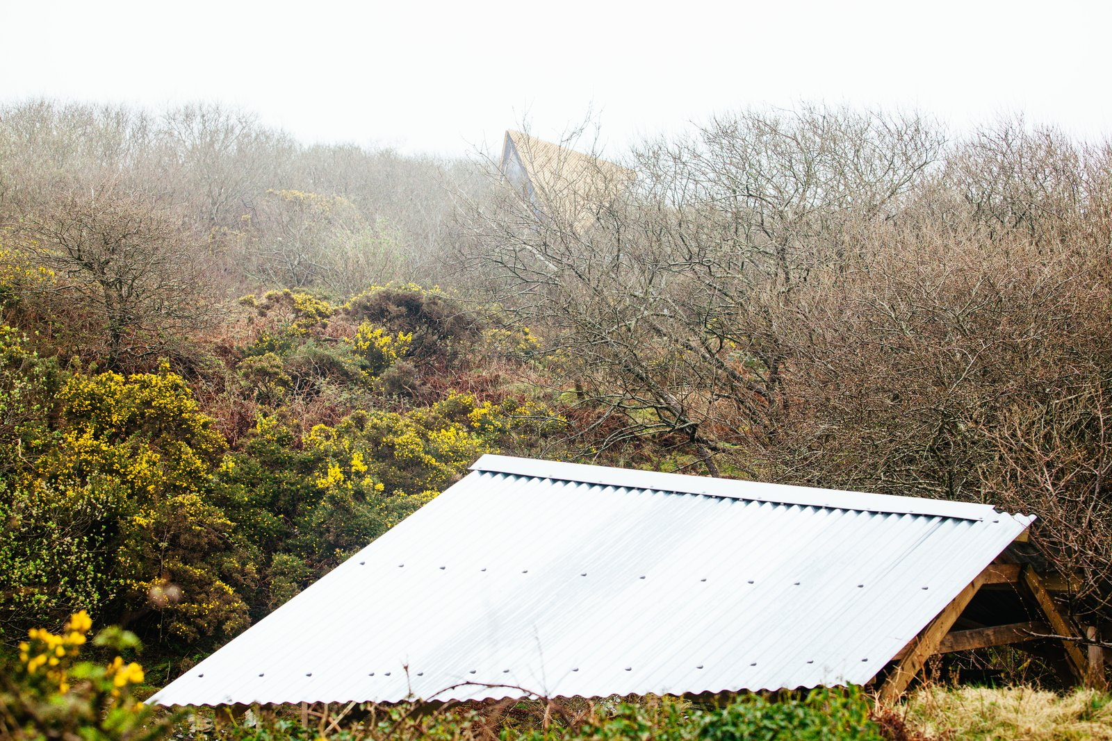Exterior, Wood Siding Material, and Cabin Building Type A view of the Kudhva rooflines against the Cornish countryside.  Photo 12 of 12 in Go Off The Grid With These Remote Rental Cabins in Cornwall