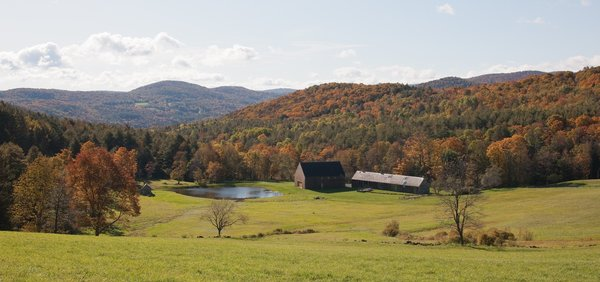 The structures overlook a large spring-fed swimming pond, rolling pastures, and the mixed northern hardwood forests that make up the property.